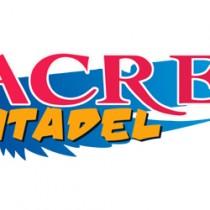 SacredCitadel500