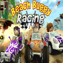 beach buggy racing smaller